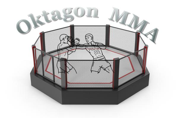 Oktagon 13 MMA živě