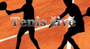 tenis zive